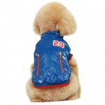 Coat for Small Dogs without Hood in Blue