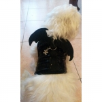 Black Harness and Leash for Small Dogs with Bat Wings
