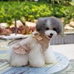Cappotto Coco Beige per Cani Piccoli