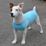 Pale Blue Dog A-shirt