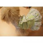 Vestito per Cani Verde 3 Bottoni