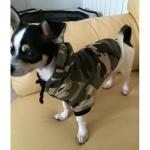 Sweatshirt Vert Camouflage pour Petits Chiens