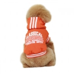 Classical Sweatshirt for Small Dogs in Orange