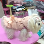 Winter Jacket for Dogs with Fur in Pink