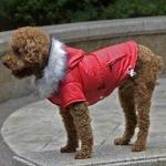 Chaqueta Acolchada en Rojo para Perro Pequeño