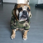 Green Camouflage Sweatshirt for Large Size Dogs