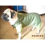 Impermeabile per Cani Verde Scuro