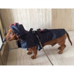 Dark Blue sleeveless raincoat for small sized dogs