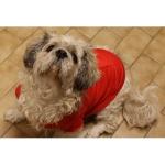 Cappottino per Cani Rosso con Tasca