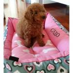 Cama Desenfundable para Perros Rosa con Corazones
