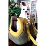 Borsa Elegante per Cani Piccoli in Giallo Ocra