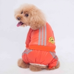 Orange Air Force Winter Suit for Small Dog