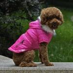 Manteau Fuchsia pour Petits Chiens avec Capuche