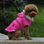Chaqueta Acolchada en Fucsia para Perro Pequeño
