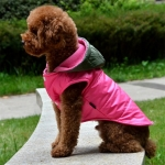 Waterproof Coat for Dogs in Pink with Green Hood