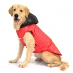 Waterproof Coat for Big Dogs in Red with Black Hood