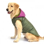 Waterproof Coat for Big Dogs in Green with Purple Hood
