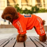 05 Sport Suit for Small Dogs in Orange