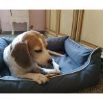 Cuccia Impermeabile e Sfoderabile per Cani Medi e Grandi in Grigio