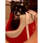 Trasportino per Cani in Microfibra Rosso e Crema