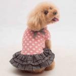Vestito Invernale Cani Piccoli in Rosa Chiaro a Pois con Gonna