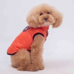 Chaqueta Bomber Naranja Doble Cara para Perro Pequeño