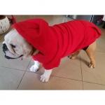 Sweat-Shirt Uni Rouge pour Grands Chiens