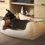 Cuccia Sfoderabile Beige per Cani Piccoli e Taglia Media
