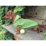 Green Sweater for Dachshunds