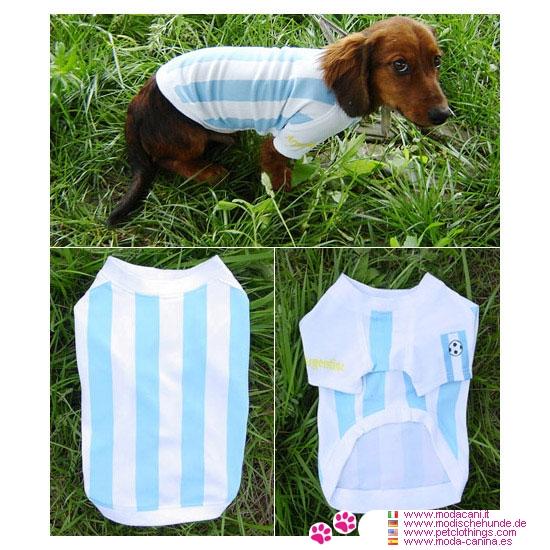 T-shirts Argentine pour Teckel