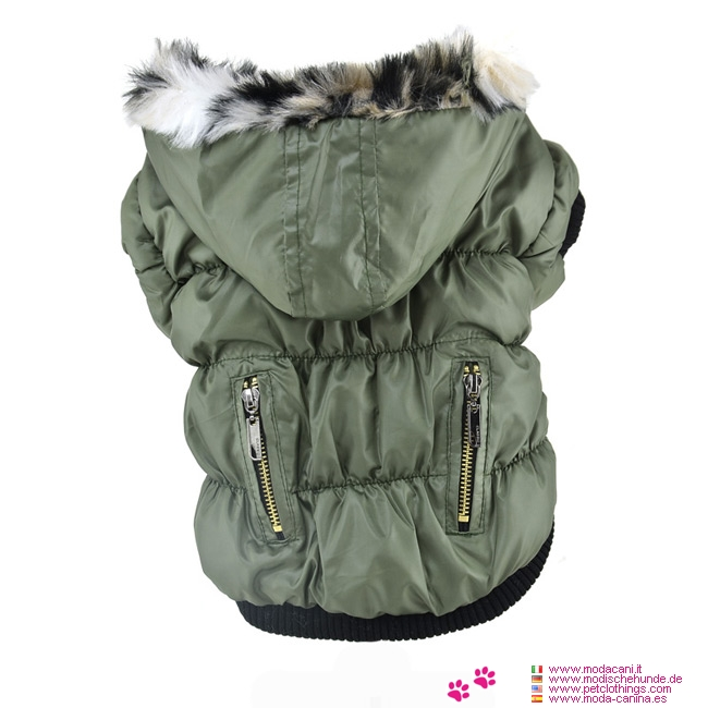 Bomber Jacket for Small Dogs with Zip and Hood in Green