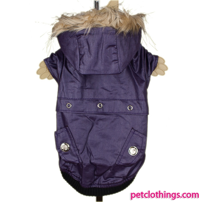 Shiny Dog Jacket in Plum Color