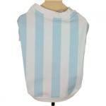 Tricot Blanc et Bleu National Argentine