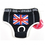 Blue pants for dogs with british flag