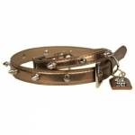 Bronze Leather Dog Collar with spikes