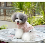 Powder Wool Sweater with Lace for Dog
