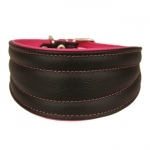 Leather Collar for Greyhounds in Black and Fuchsia