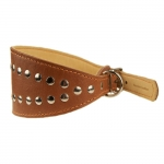 Collar for Greyhound in Brown Leather with Studs