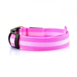 Collare Rosa Luminoso a Led per Cani