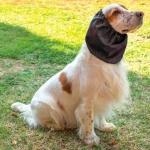 Orejeras Impermeable para Perros en Negro